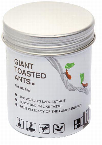 Гигантские поджаренные муравьи?