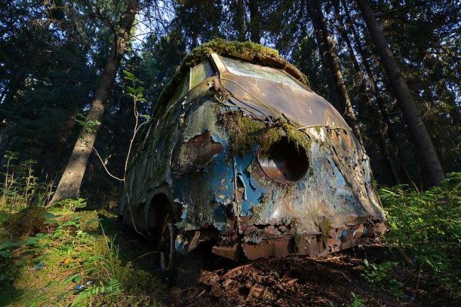 В диком - диком лесу заблудился VW.